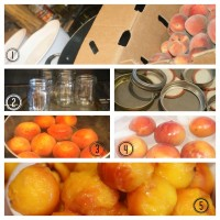 Summer Delight: Peach Jam Canning Recipe & Tutorial w/ Printable