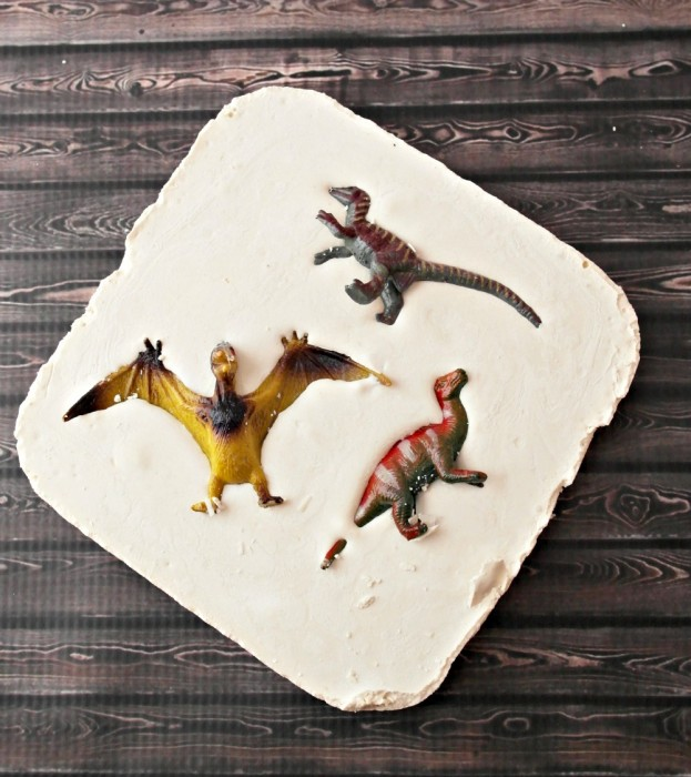How to make a dinosaur fossil with plaster of paris and water