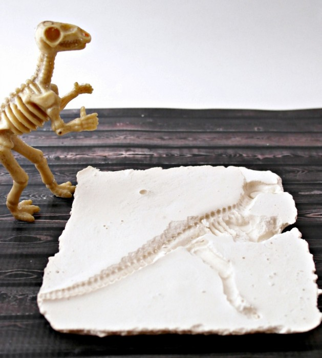 How to make a dinosaur fossil