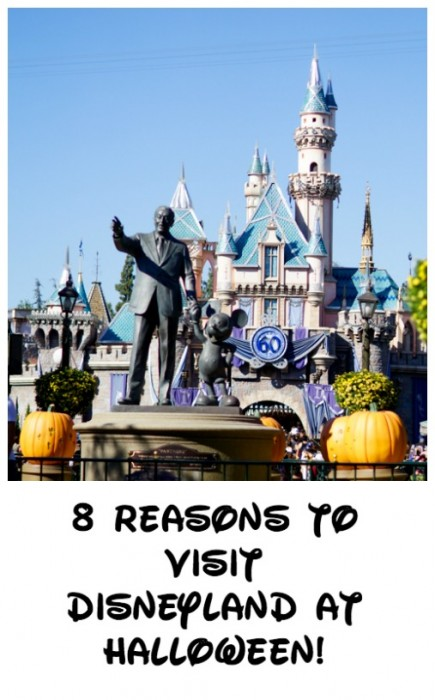 8 Reasons to Visit Disneyland at Halloween Time!