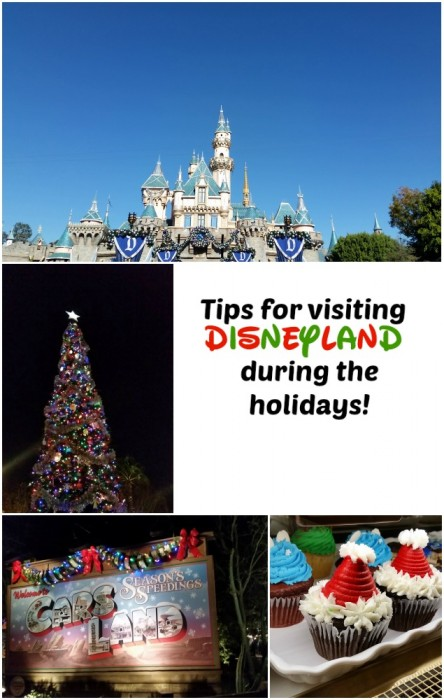 Disneyland Holiday Tips ~ Make sure your trip to the happiest place on earth is enjoyable for everyone. Tips for avoiding crowds, where to go for quiet times and more!
