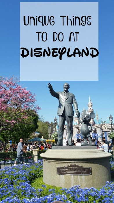 Fun and Unique Things to do at Disneyland