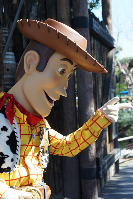 Woody at Disneyland