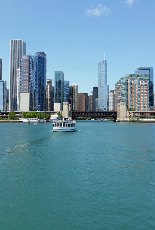20 things to do in Chicago