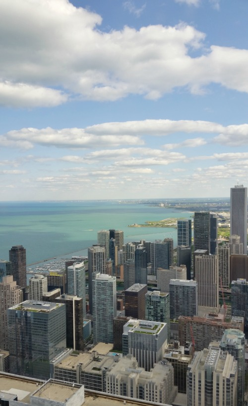 Visit Chicago in 24 hours