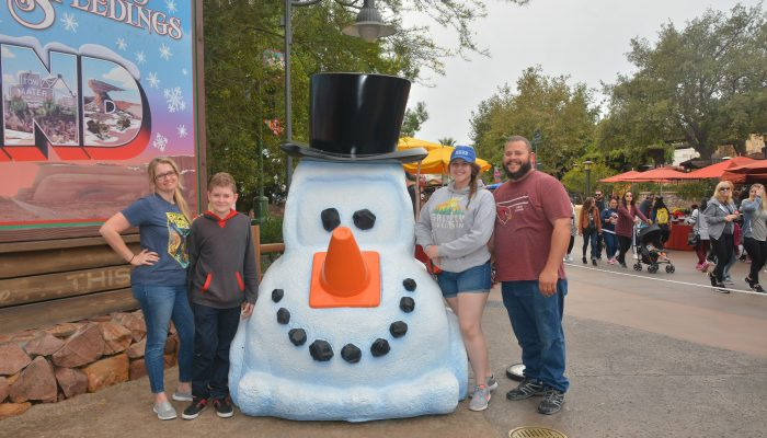 Reasons to Visit Disneyland During Christmas Time in 2017